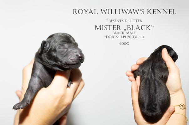 RW_black_1Tag