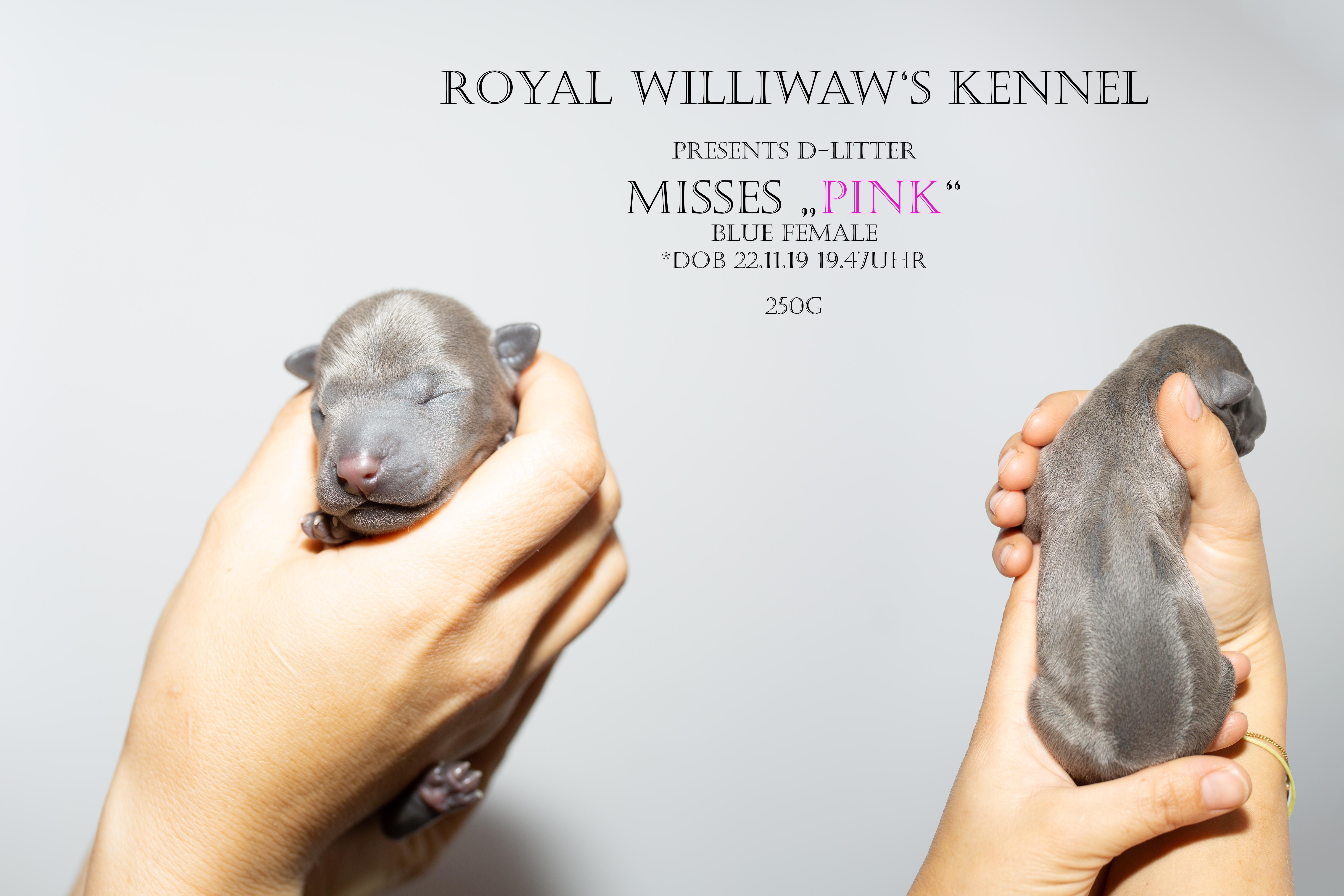 RW_pink_1Tag
